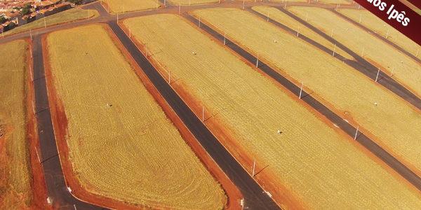 Pavimentação da Ala dos Ipês 100% concluída