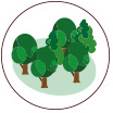natureza icone loteamento terras da estancia paulinia